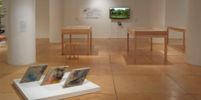 An installation photograph of the gallery space. A sculpture of three rhombus-shaped sculptures are positioned on the floor. In the background, there are three wooden and glass vitrines. On the wall behind the vitrines, a T.V is playing a video of green plants.