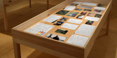 A photograph angled downward of a wooden and glass vitrine. Inside the virtine are an assortment of square and rectangle documents, photographs, and handwritten notes.