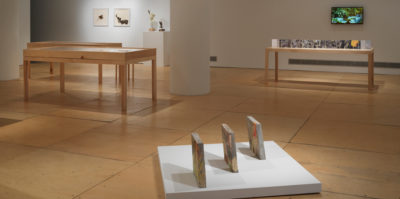 An installation photograph of the gallery space. A sculpture of three rhombus-shaped sculptures are positioned on the floor. In the background, there are three wooden and glass vitrines. On the wall behind the vitrines, a T.V is playing a video of green plants. On the left side of the wall, are two small-scale sculptures. One of the sculptures is of a face with a hat on. Beside the two sculptures is another didactic set of framed photographs with an abstracted design, situated in a white, square, frame.