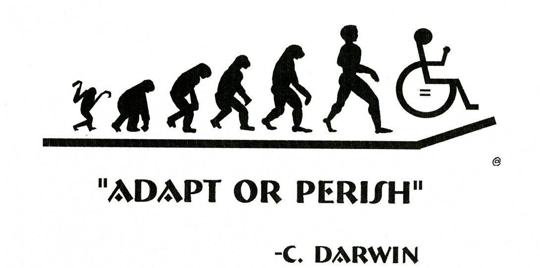 """A designed black and white image. In the center of the image, there is black silhouettes of the human evolution from primate to human. On the end of the line after the human silhouette is the accessible wheelchair design. Below this design is bolded text that writes, """"ADAPT OR PERISH by C. Darwin"""""""