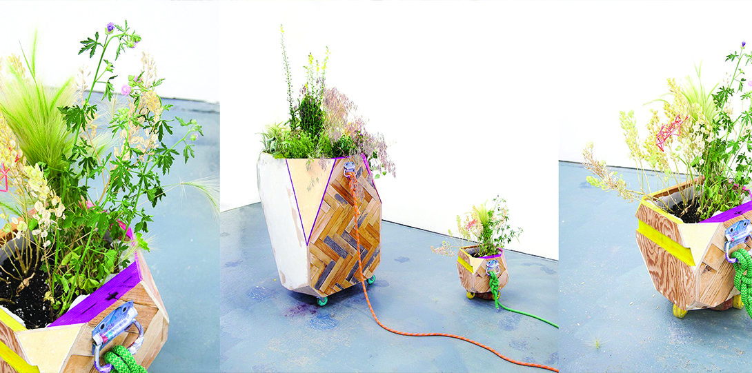 A collaged image of three photographs. Each photograph is of an arrangement of small plants in a wooden pot. The woods pots are designed with multiple types of woods and shapes. The shapes on the pots are squares of woods on each side and a triangle-cut piece of wood in each corner.