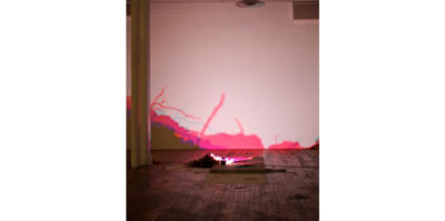 A installation photograph of a light sculpture placed on the gallery floor, reflecting an image to the wall in front of it. The light image projected on the wall takes the form of leaves and branches.Extending across the entire bottom of the full wall, the colors flow from a gradient from dark purple, pink, and light blue.